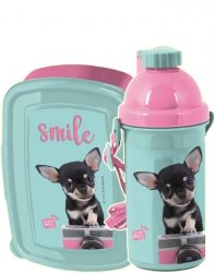 Bidon Śniadaniówka Pies Chihuahua Pojemnik na Śniadanie [PTE-3022]