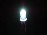Komplet diod 2szt. białe - Delight White Led