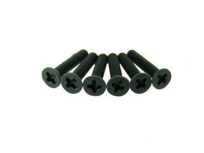 Flat Head Screws 3x16 6p - 31061