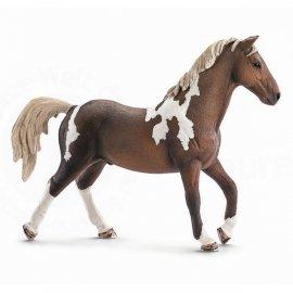 Koń Trakenhner