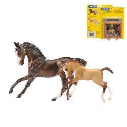 Koń Sportowy i Źrebak