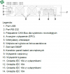 UPS LEGRAND DAKER DK PLUS 6000VA/6000W bez baterii wewnętrznych, pf=1
