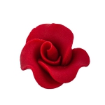 Róża mała 22 szt. bordowa