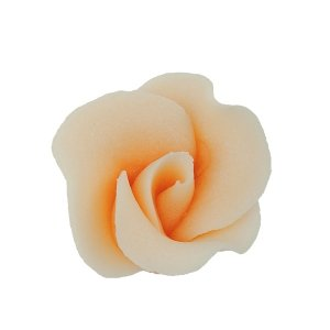 Róża mała 22 szt. herbaciana