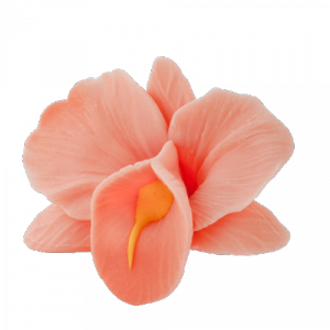 Kwiaty cukrowe - Storczyk opak. 10 szt. łososiowy