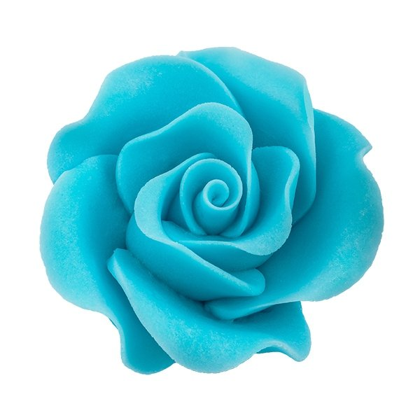 Róża Max 6 szt. niebieska
