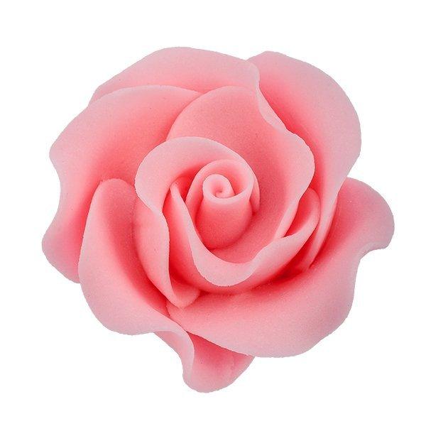 Róża Max 6 szt. różowa