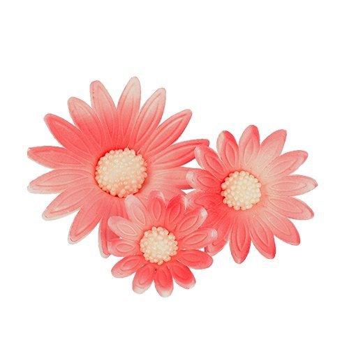 Rumianek 20 szt. komplet różowy 3 wielkości