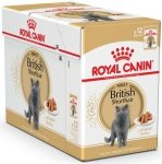 Royal Canin British Shorthair Adult - saszetka 12x85g