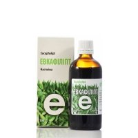 Eukafilipt, Wyciąg z Pędów Eukaliptusa Chlorofillipt, 100 ml
