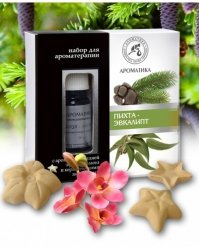 Aromatherapy Set with Pure Essential Oils and Ceramic Asterisks Silver Fir & Eucalyptus