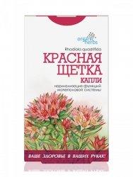 Krople Ziołowe Różeniec (Rhodiola quadrifida), Czerwona Szczotka, 50 ml