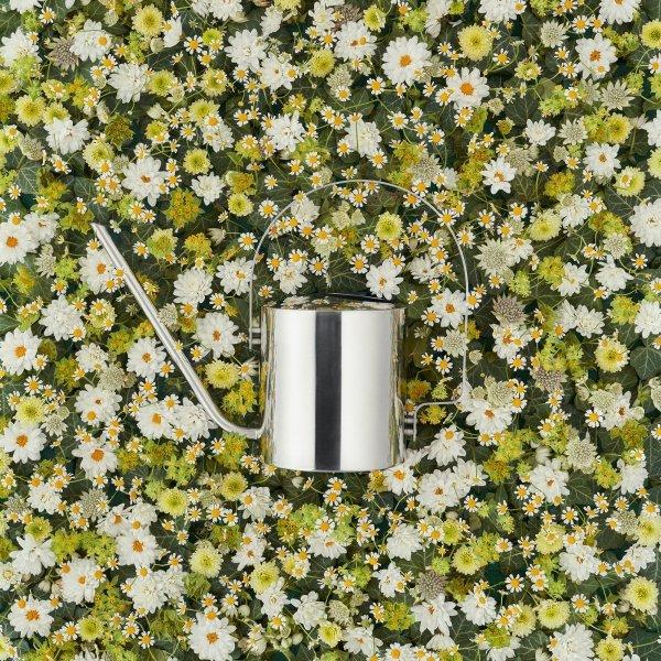 Stelton ORIGINAL Stalowa Konewka do Kwiatów 1,7 l
