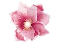 Magnolia Róż [Komplet - 20 Sztuk]