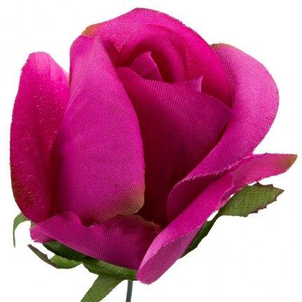 Róża Pąk Amarant [Komplet 12szt]