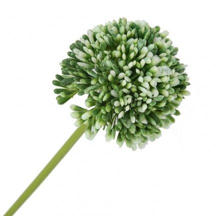 Gałązka Kwiat Cebuli Biały-Pistacja [ Komplet 10szt ]