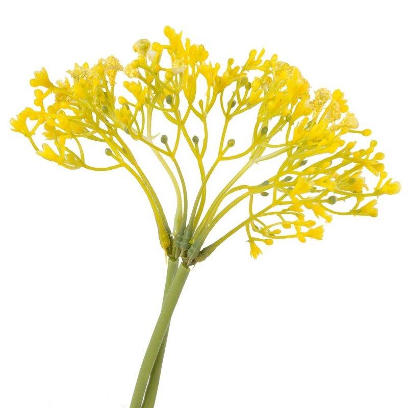 Gipsówka Żółta 2szt [ Komplet 10 Pęczków ]