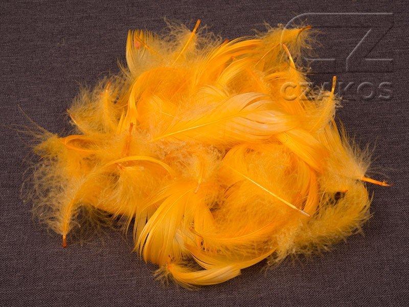 Piórka w torebce - Ciepły Żółty [Komplet 10szt.]