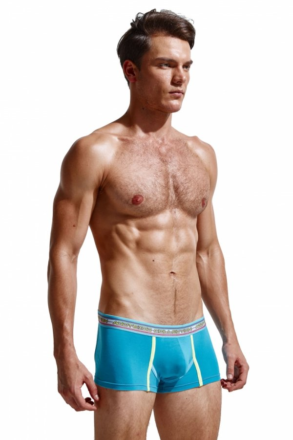 ADX UNDERWEAR Joy Blue Boxer Briefs