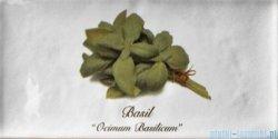 Fabresa Artisan Herb Decor Mix płytka ścienna 10x20