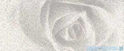 Ceramika Color Neo-Geo róża efekta biała dekor 25x60