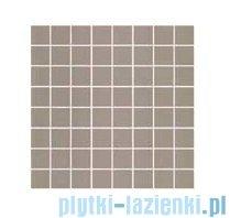 Ceramika Color Luna grey mozaika ścienna 25x25