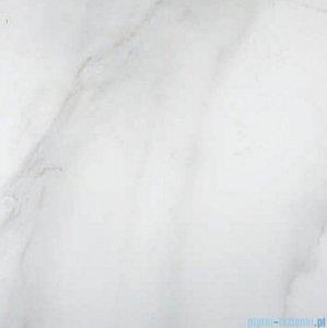 Geotiles Calacatta Gris płytka podłogowa 60x60