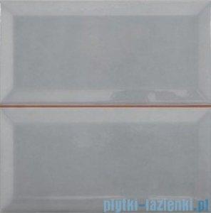 Argenta Metropolitan Prei Gris płytka ścienna 20x20