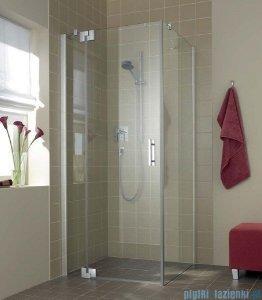 Kermi Filia Xp Drzwi wahadłowe z polem stałym, lewe, szkło przezroczyste KermiClean, profile srebrne 80x200cm FX1WL08020VPK