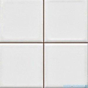 Argenta Matrix White płytka ścienna 20x20