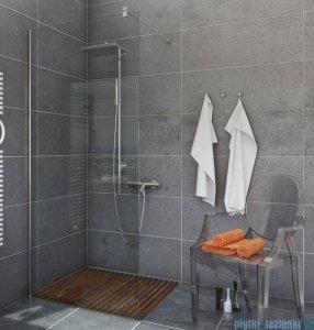 Kabiny Bezdrzwiowe Walk In Szyby ścianki Prysznicowe Euroaqua