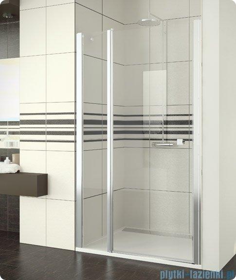 SanSwiss Swing Line SL13 Drzwi prysznicowe 120cm profil srebrny SL1312000107