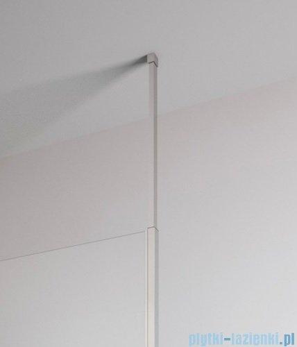 Radaway Euphoria Walk-in II kabina 140cm szkło przejrzyste wspornik dosufitowy