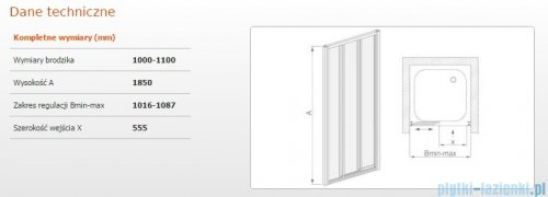 Sanplast drzwi przesuwne DTr-c-100-110 szkło Sitodruk W4 600-013-1841-01-410