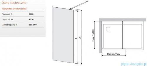 Sanplast Space Wall P/SPACEWALL kabina walk-in 90x200 cm przejrzyste 600-320-2130-42-401
