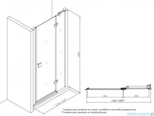 Roca Metropolis drzwi prysznicowe 120cm szkło przejrzyste AMP3412012M