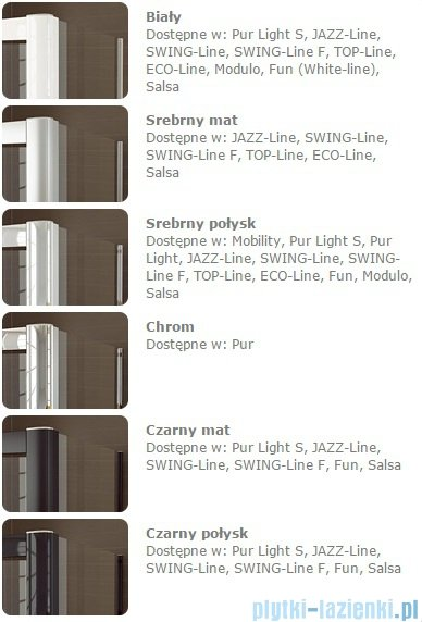 SanSwiss Pur PU31P Drzwi lewe wymiary specjalne do 200cm Master Carre PU31PGSM41030