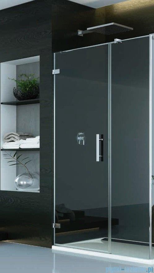 SanSwiss PUR PU31P drzwi z profilem lewe 120x200cm pas satynowy PU31PG1201051