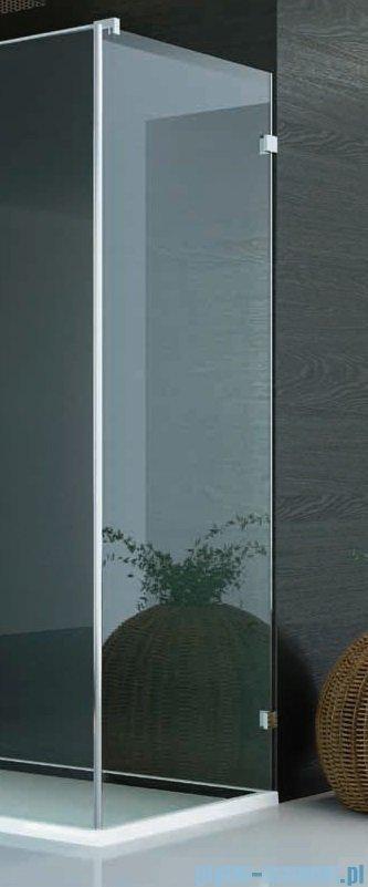 SanSwiss PUR PU31 Ścianka boczna wymiary specjalne 30-100/do 200cm krople PURDT3SM21044