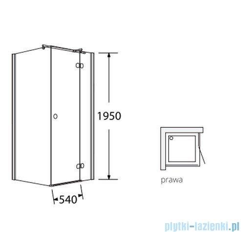 Sea Horse Fresh Line kabina natryskowa narożna, kwadratowa, prawa,  drzwi pojedyncze,  90x90 cm, ze ścianką boczną,  BK247TP