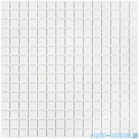 Dunin Q Series mozaika szklana 32x32 non slip coco