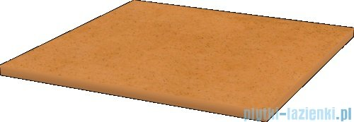 Paradyż Aquarius beige klinkier płytka bazowa 30x30