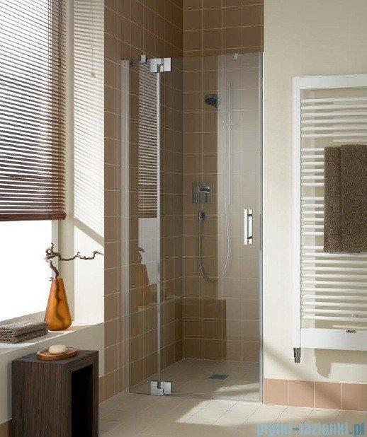 Kermi Filia Xp Drzwi wahadłowe z polem stałym, lewe, szkło przezroczyste KermiClean, profile srebrne 100x200cm FX1TL10020VPK