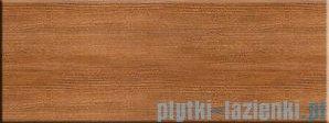 Płytka podłogowa Pilch Capri brąz PR-353R 16,07x42,57