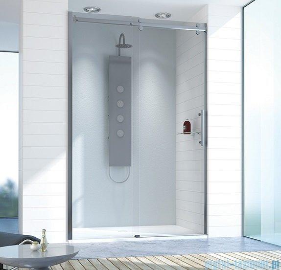 Sanplast drzwi przesuwne D2/ALTIIa-110-120 110-120x210 cm przejrzyste 600-121-1511-42-401