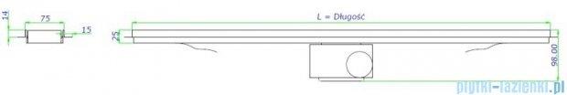 Green Line odpływ liniowy 50 cm ruszt sunny + syfon GL500SU