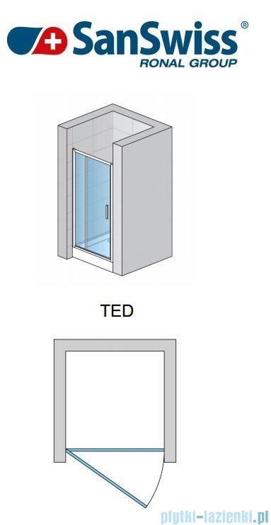 SanSwiss Top-Line TED Drzwi 1-częściowe 120cm profil biały TED12000407