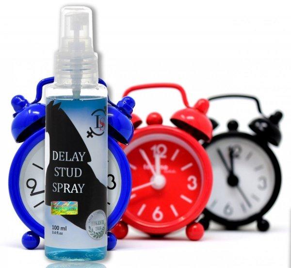 10x DUPLIKAT: Spray Delay Stud 100 ml