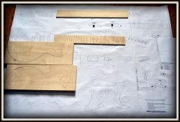 Plan budowy gitary FENDER STRATOCASTER DELUXE