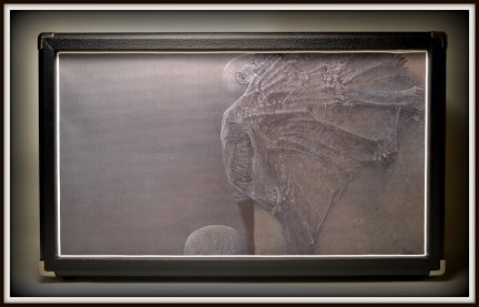 Kolumna 2x12 Eminence Legend V 128 GRAPHICS I